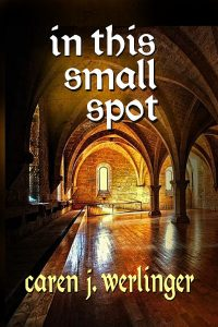 In This Small Spot by Caren Werlinger